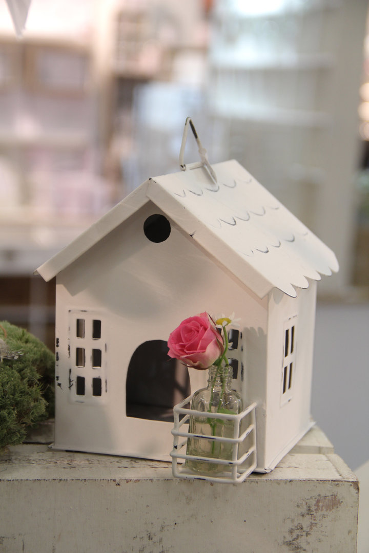 Haus mit Flasche Blumenvase