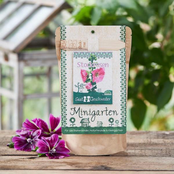 "Minigarten ""Stockrose"", Alcea rosea"