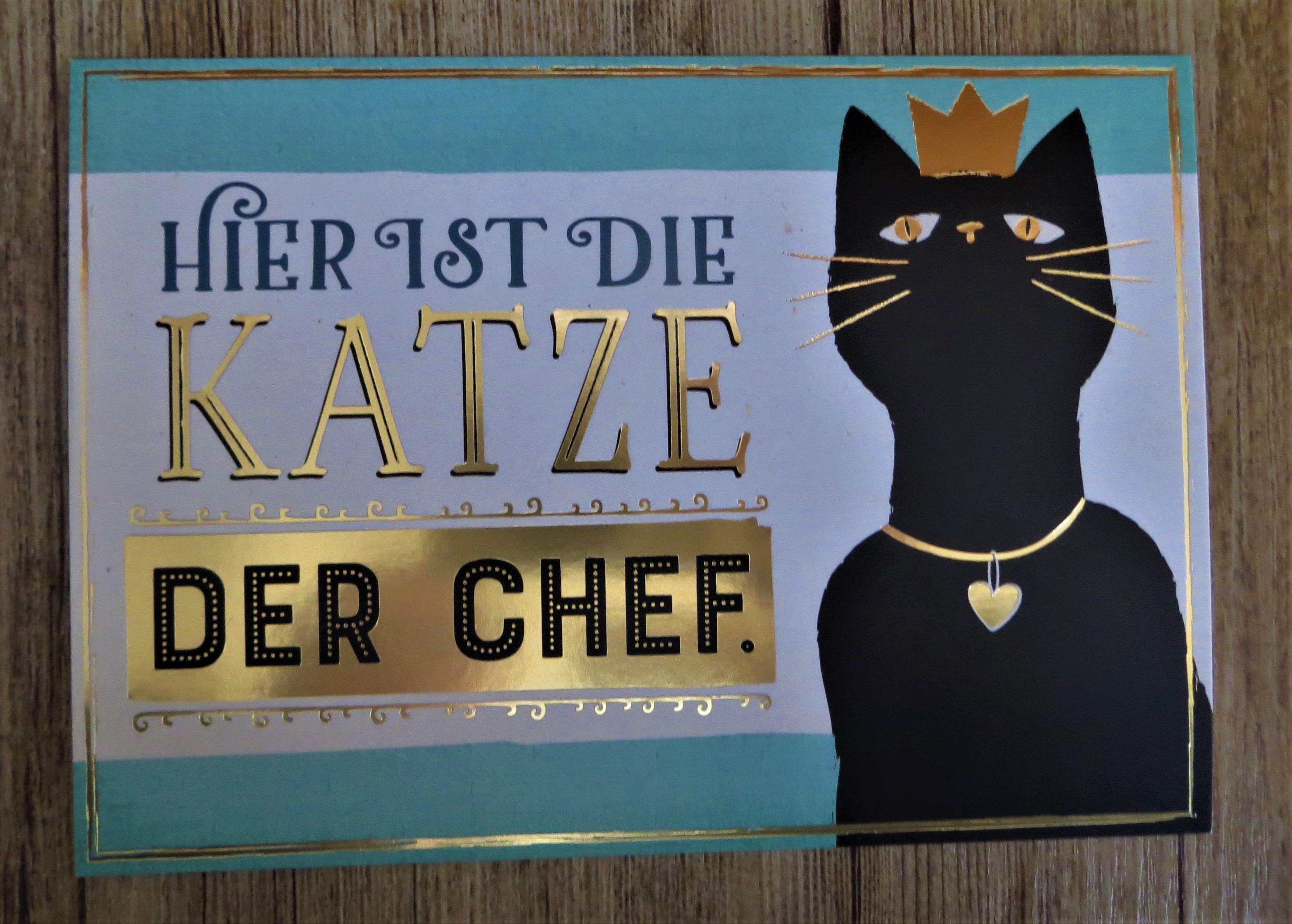 Postkarte Hier ist die Katze der Chef.. VintageArt