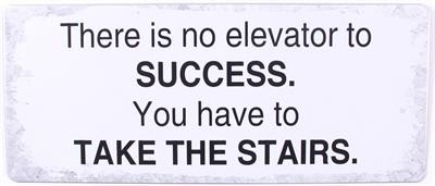 "Metall Schild ""There is no elevator to success...."""