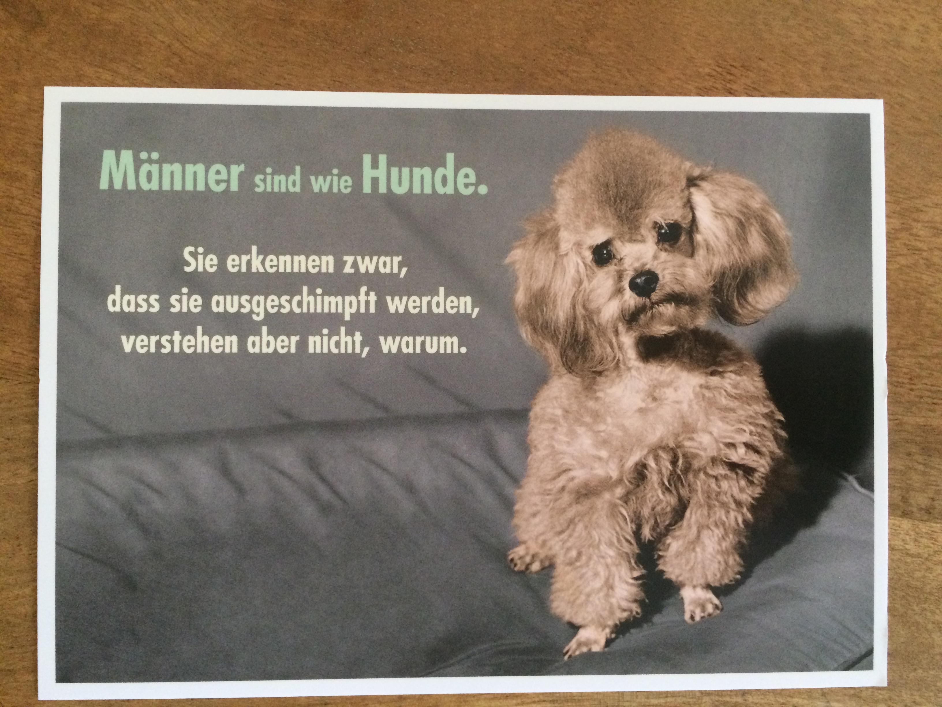 Postkarte Karte Männer sind wie Hunde. Sie erkennen zwar dass sie ausgeschimpft werden ... Palom