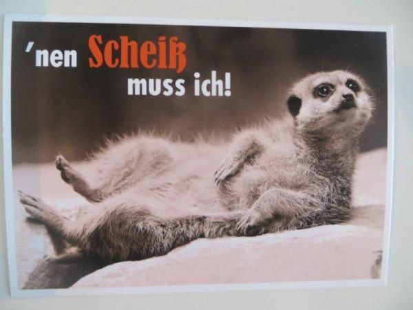 """Postkarte Karte """"´nen Scheiß muss ich!"""" Paloma"""