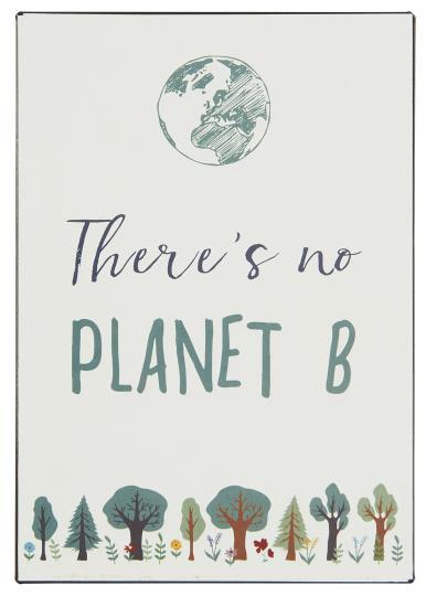 Witzigschilder - Metallschild There is no planet B Ib Laursen ApS - Onlineshop Tante Emmer