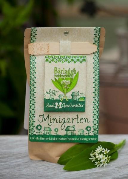 """Minigarten """"Bärlauch"""", Allium ursinum"""