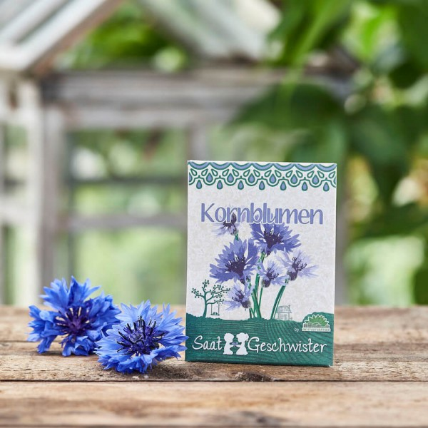 "Saatgut ""Kornblumen"", Centaurea cyanus"