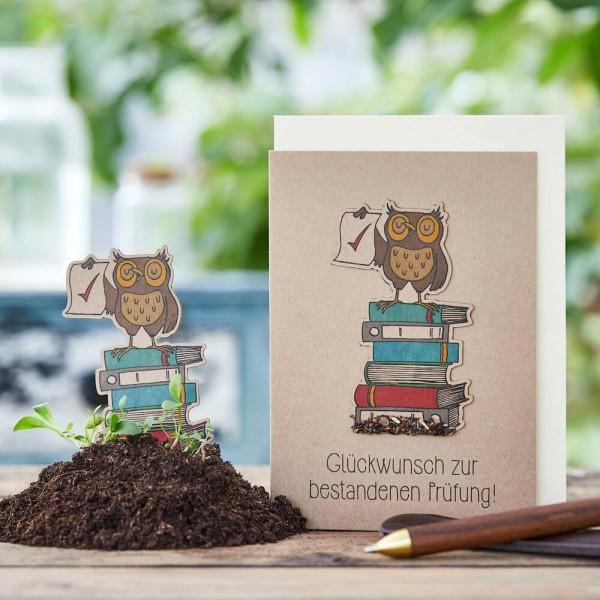 """Grußkarte """"Glückwunsch zur bestandenen Prüfung!"""", mit Wildblumen-Saatstecker"""