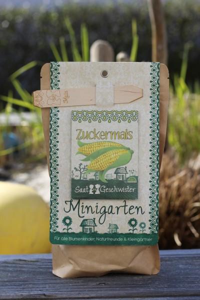 "Minigarten ""Zuckermais"", Zea mays convar. saccharata"