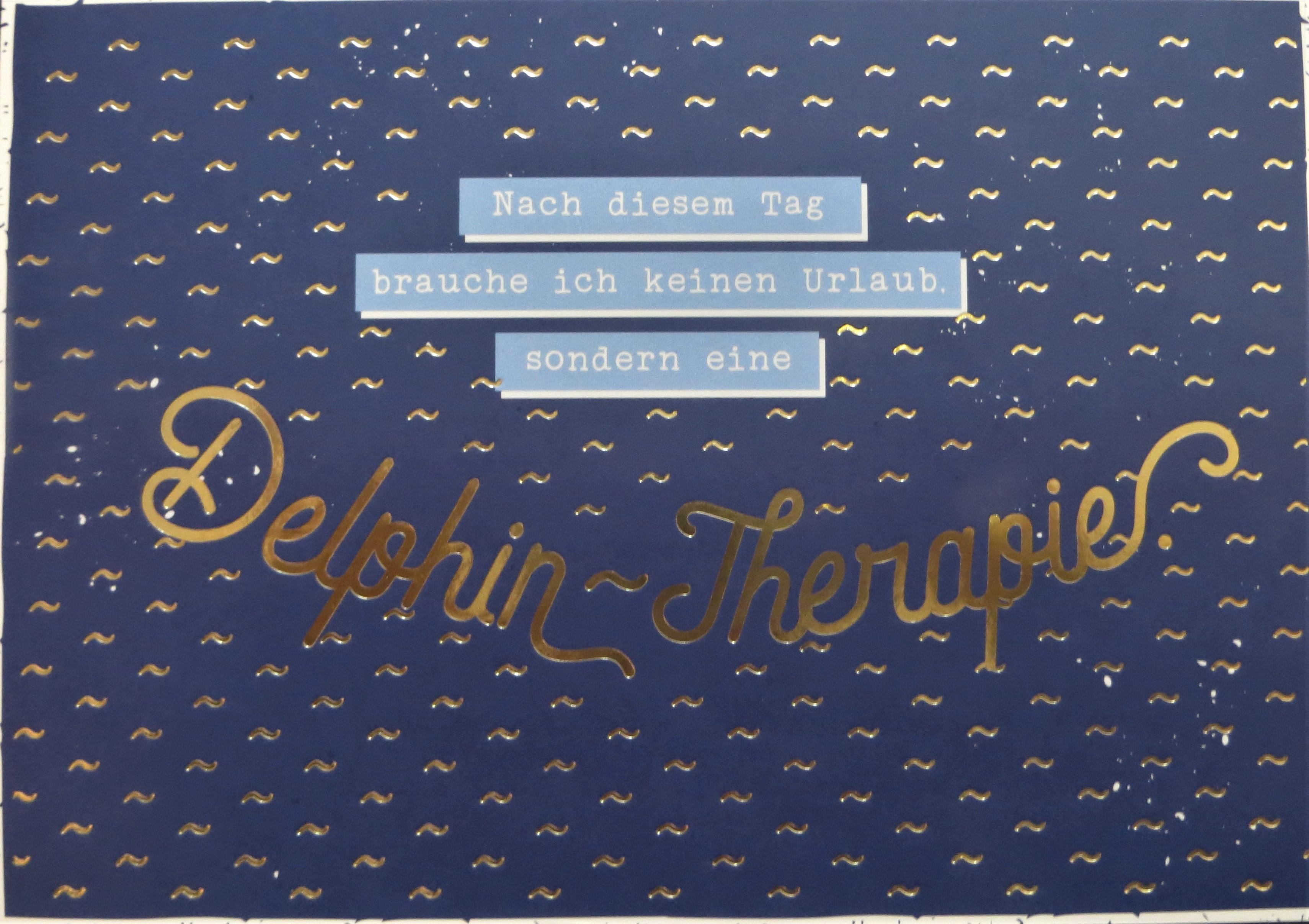 Postkarte Nach diesem Tag brauche ich keinen Urlaub sondern eine Delphin Therapie VintageArt